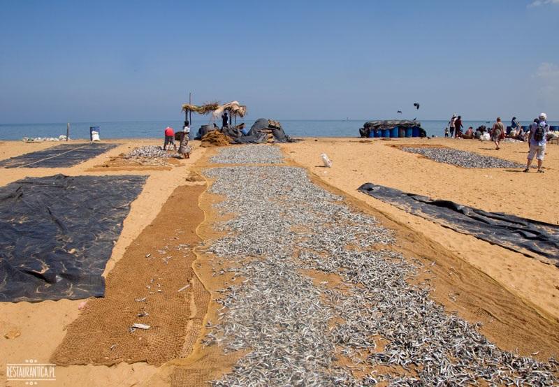 Targ rybne dywany Negombo
