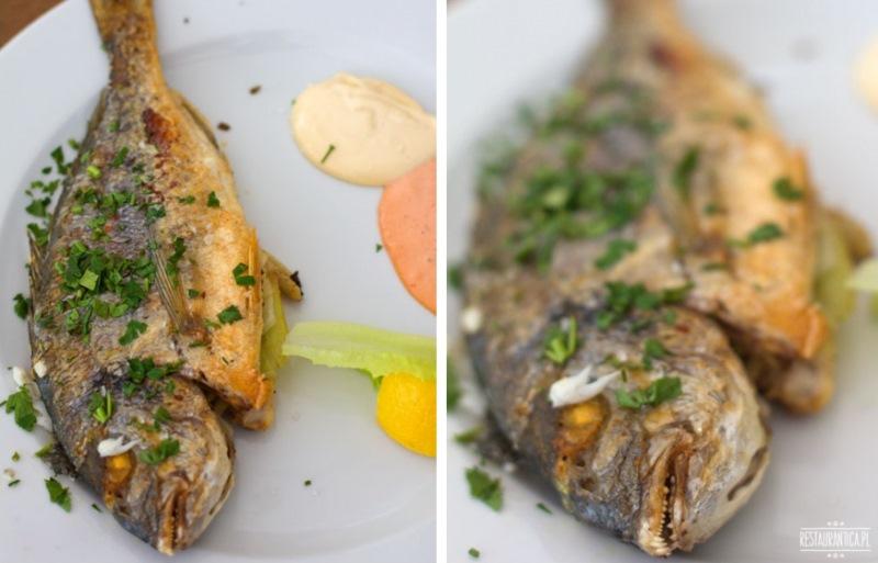 Fishmarket dorada