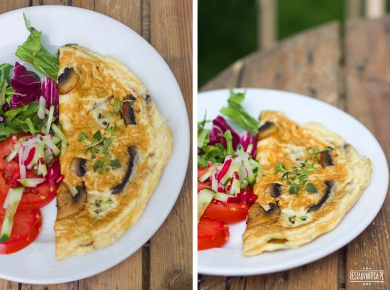 Roślina omlet