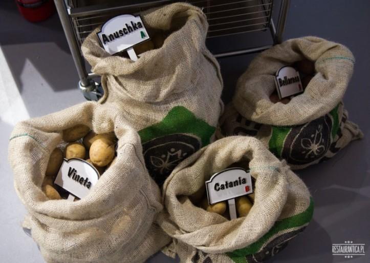 O ziemniakach słów kilka czyli znaj ziemniaki