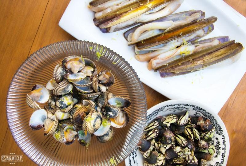 Galicja Galicia owoce morza