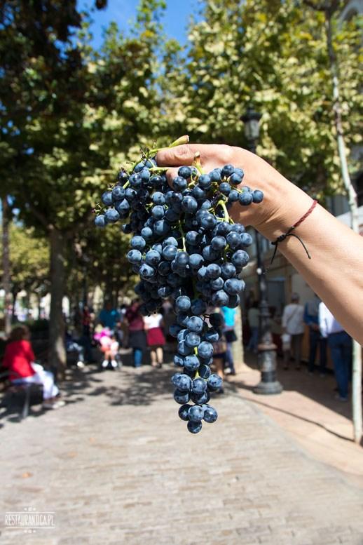 winogrona San Mateo