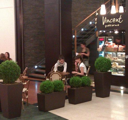 Cafe Vincent w Arkadii