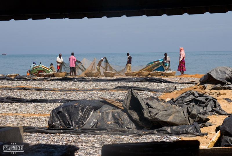 Targ Rybny Sri Lanka plaża