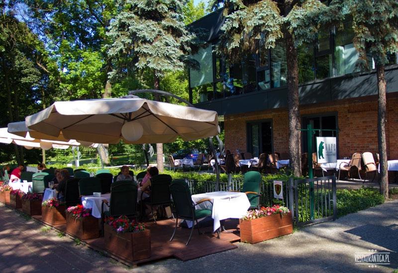Kafe Zielony Niedzwiedz ogródek