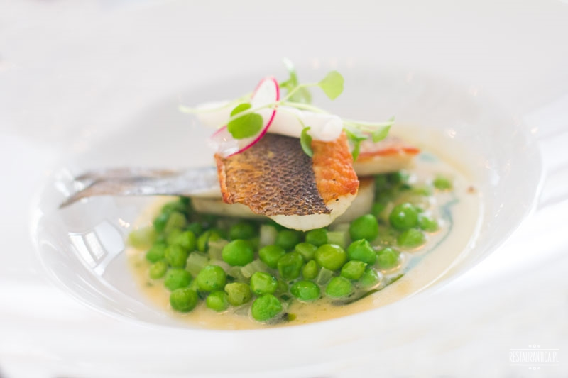 Borkonyha, Budapeszt, ryba, gwiazdka Michelin, restauracja