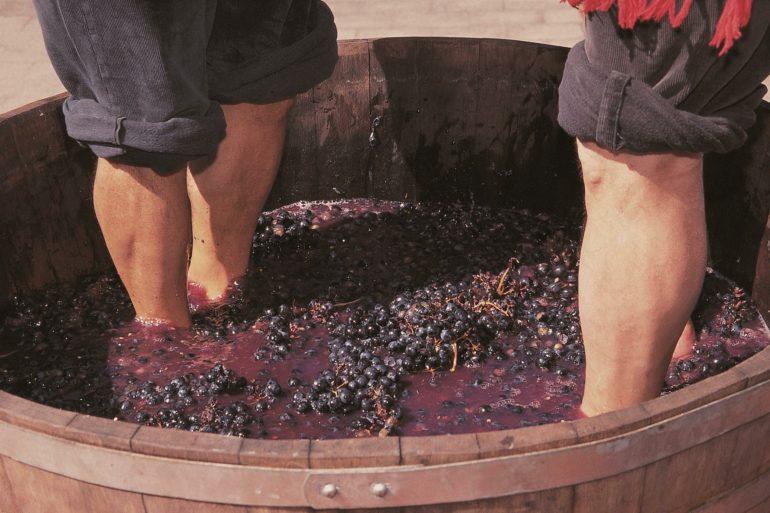 Święto Wina w La Rioja – Fiesta de San Mateo